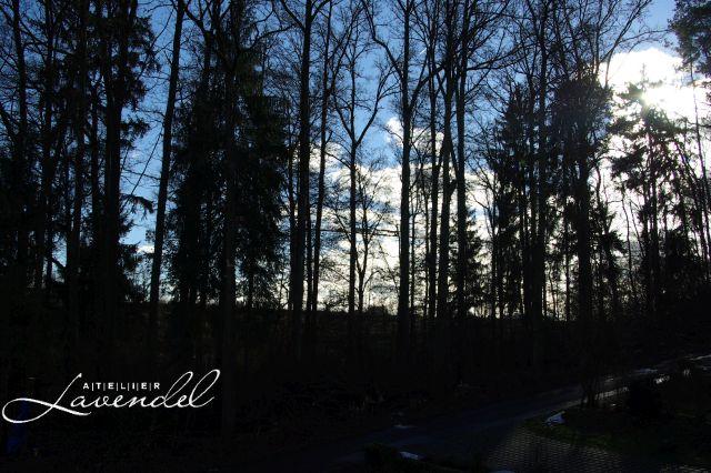 January Sky by Atelier Lavendel