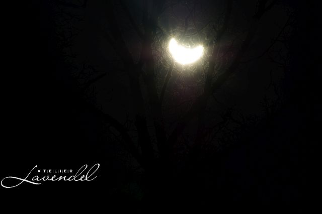 solar eclipse 2015 by Atelier Lavendel